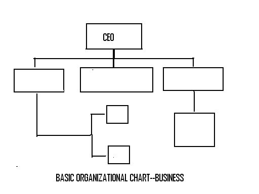 lrportf--basic-organizational-chart--business.jpg
